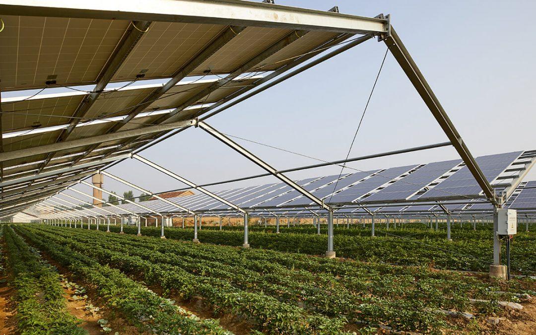 Kiemelt szerepet szán az Európai Unió a napelemparkoknak az új biodiverzitás és élelmiszerlánc stratégiáiban
